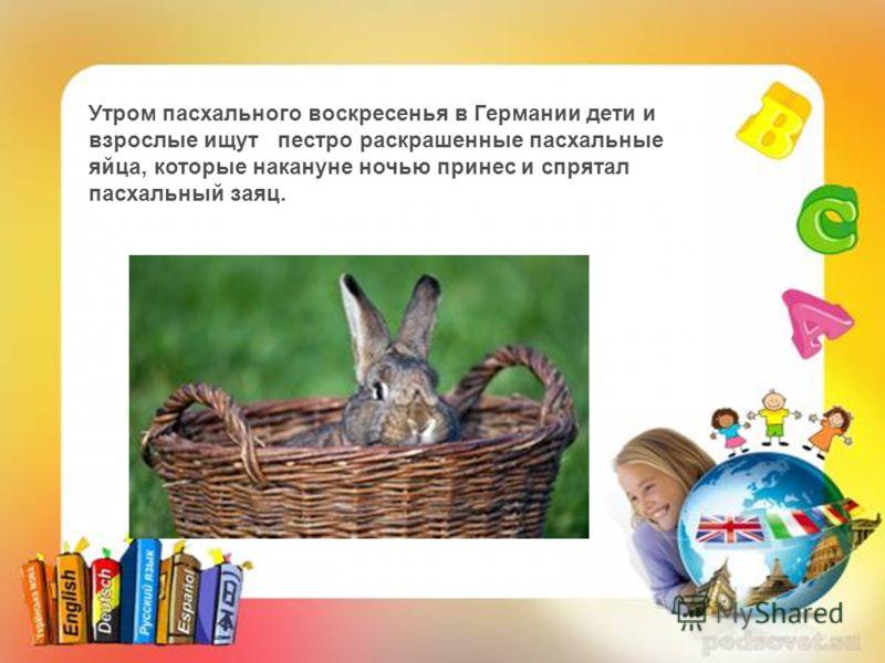 Утром пасхального воскресенья в Германии дети и взрослые ищут пестро раскрашенные пасхальные яйца, которые накануне ночью принес и спрятал пасхальный заяц.