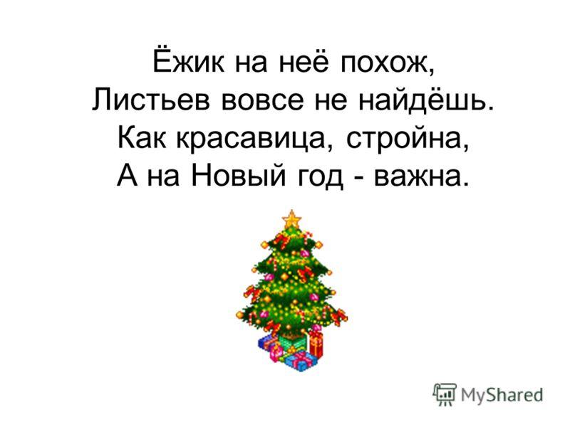 Ёжик на неё похож, Листьев вовсе не найдёшь. Как красавица, стройна, А на Новый год - важна.