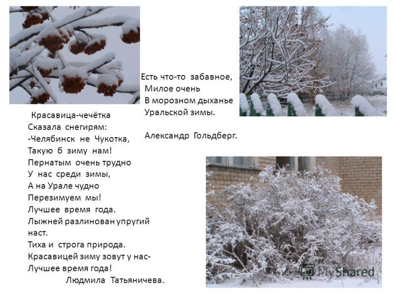 Красавица-чечётка Сказала снегирям: -Челябинск не Чукотка, Такую б зиму нам! Пернатым очень трудно У нас среди зимы, А на Урале чудно Перезимуем мы! Лучшее время года. Лыжней разлинован упругий наст. Тиха и строга природа. Красавицей зиму зовут у нас