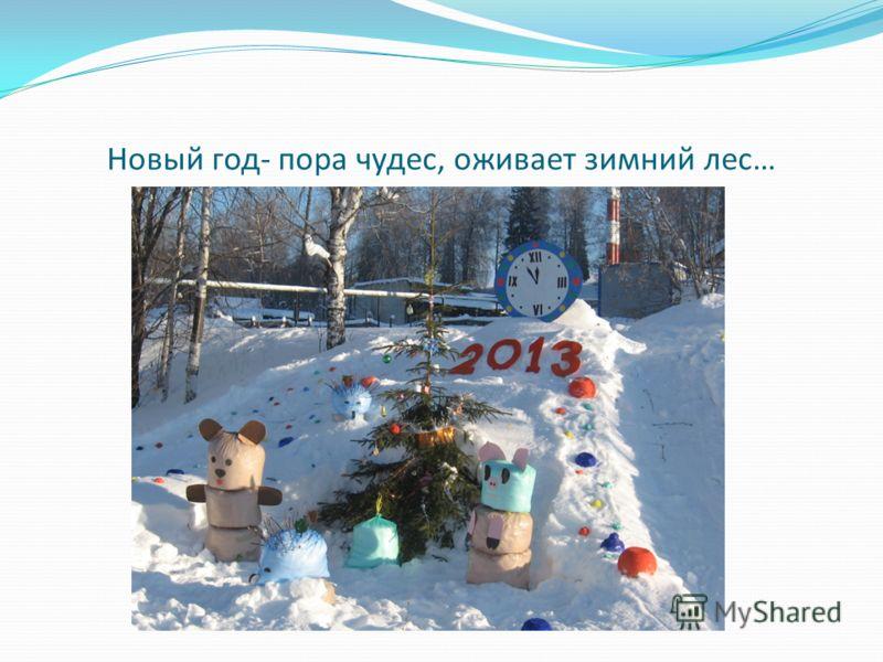 Новый год- пора чудес, оживает зимний лес…