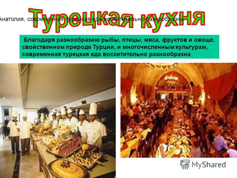 Возможн о, благодаря бесконечному разнообразию рыбы, птицы, мяса, фруктов и овощей, свойственному природе Турции, или многочисленным культурам, родиной которых была Анатолия, современная турецкая еда восхитительно разнообразна. Благодаря разнообразию