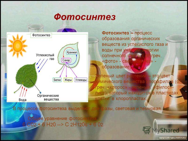 Фотосинтез Фотосинтез – процесс образования органических веществ из углекислого газа и воды при участии энергии солнечного света. ( от греч. «фото» - свет, «синтез» - образование) Зеленый цвет растений – это цвет химического вещества хлорофилла (от г