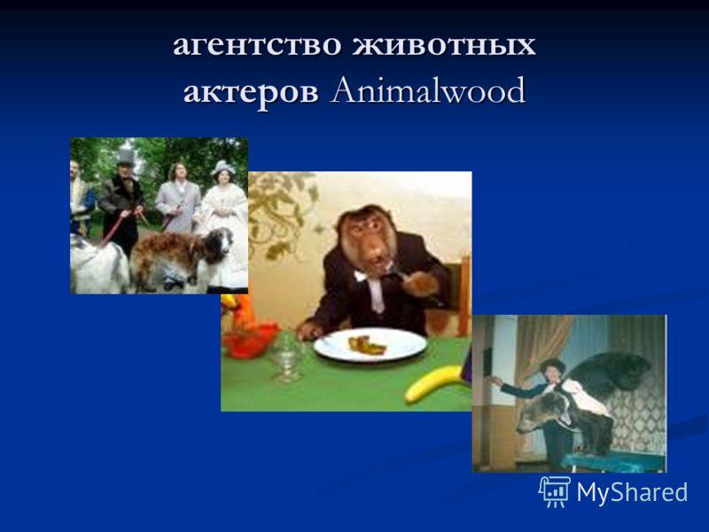 агентство животных актеров Animalwood