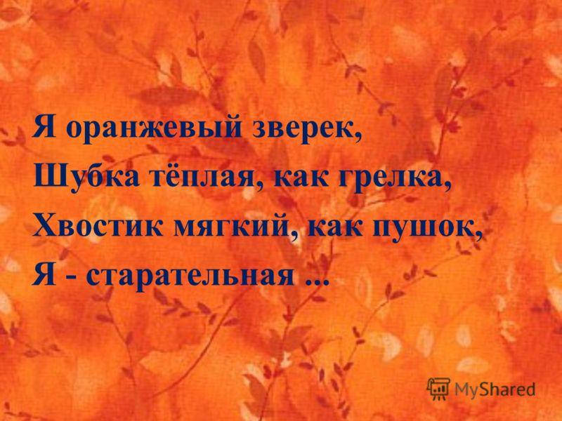 Я оранжевый зверек, Шубка тёплая, как грелка, Хвостик мягкий, как пушок, Я - старательная...