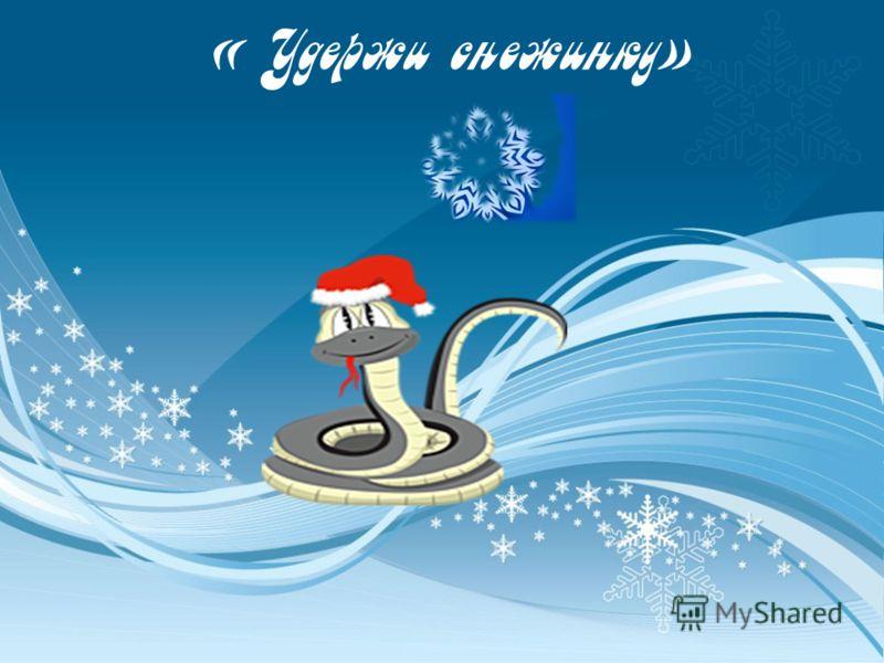 « Удержи снежинку»