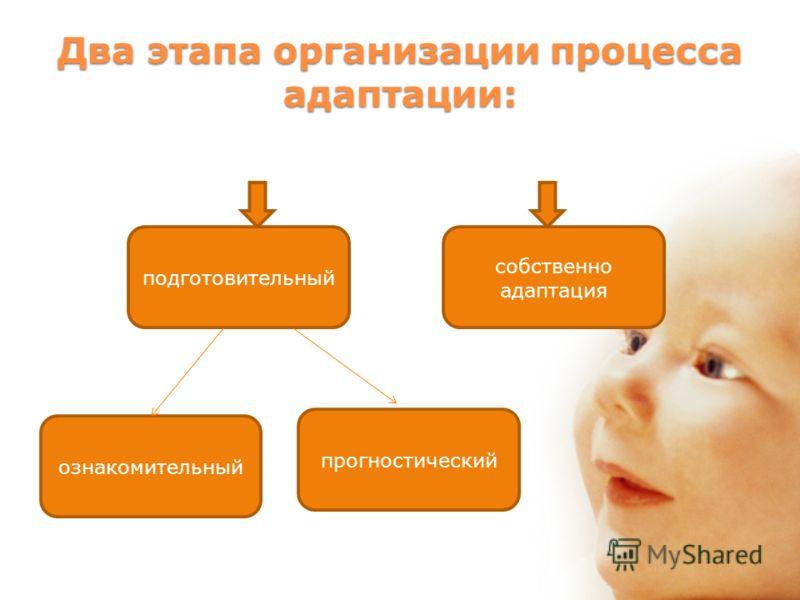 Два этапа организации процесса адаптации: подготовительный прогностический ознакомительный собственно адаптация
