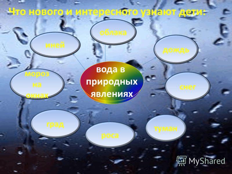 вода в жизни человека Что нового и интересного узнают дети: