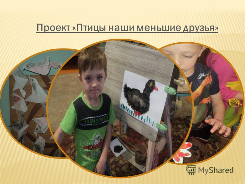 Проект «Птицы наши меньшие друзья»