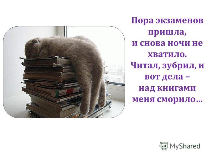Пора экзаменов пришла, и снова ночи не хватило. Читал, зубрил, и вот дела – над книгами меня сморило…