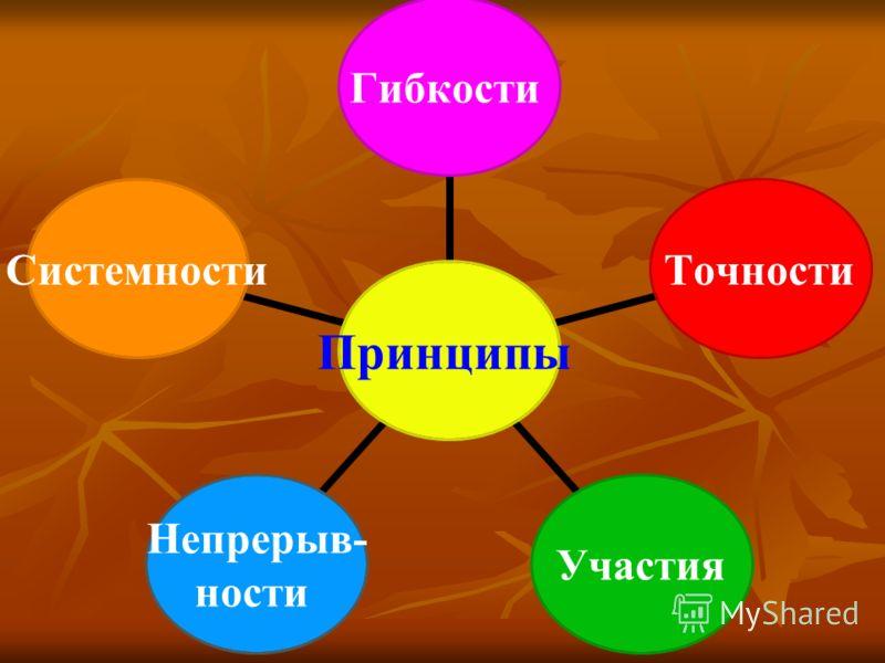 Принципы ГибкостиТочностиУчастия Непрерыв- ности Системности