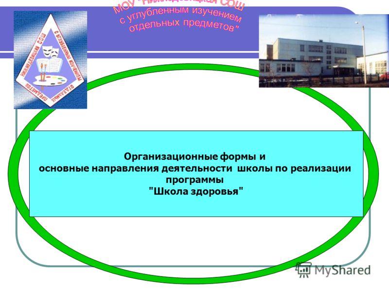 Организационные формы и основные направления деятельности школы по реализации программы Школа здоровья