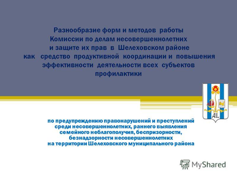 Разнообразие форм и методов работы Комиссии по делам несовершеннолетних и защите их прав в Шелеховском районе как средство продуктивной координации и повышения эффективности деятельности всех субъектов профилактики по предупреждению правонарушений и