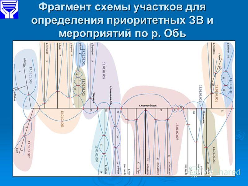 Фрагмент схемы участков для определения приоритетных ЗВ и мероприятий по р. Обь