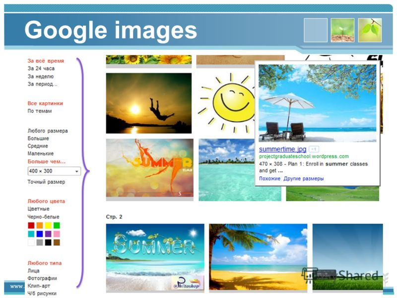 www.themegallery.com Google images