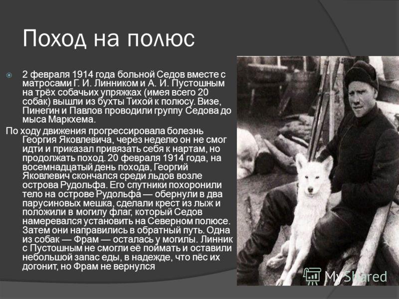 Поход на полюс 2 февраля 1914 года больной Седов вместе с матросами Г. И. Линником и А. И. Пустошным на трёх собачьих упряжках (имея всего 20 собак) вышли из бухты Тихой к полюсу. Визе, Пинегин и Павлов проводили группу Седова до мыса Маркхема. По хо