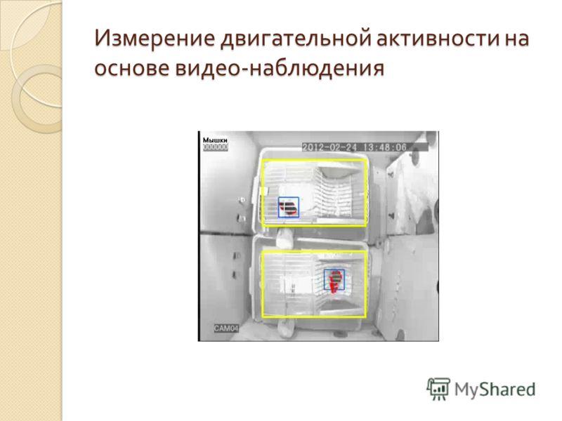 Измерение двигательной активности на основе видео - наблюдения