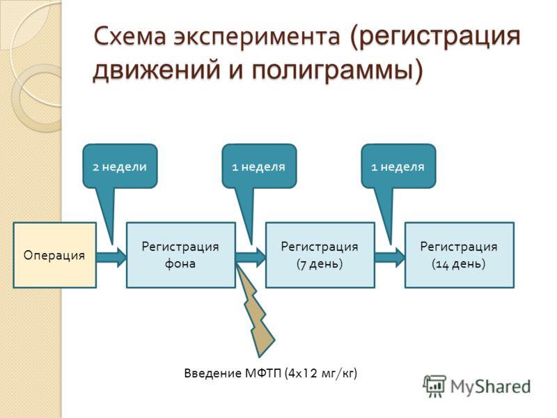 Схема эксперимента (регистрация движений и полиграммы) Операция 2 недели Регистрация фона 1 неделя Регистрация (7 день ) 1 неделя Регистрация (14 день ) Введение МФТП (4 x12 мг / кг)