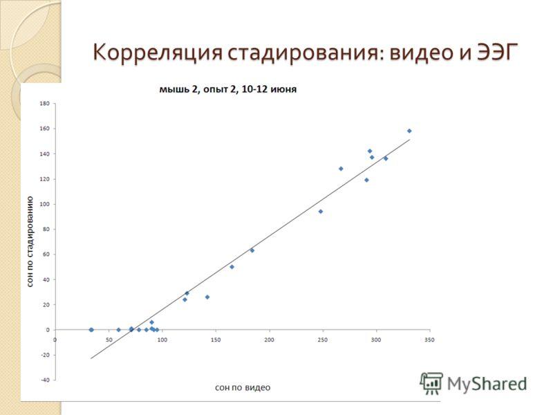 Корреляция стадирования : видео и ЭЭГ