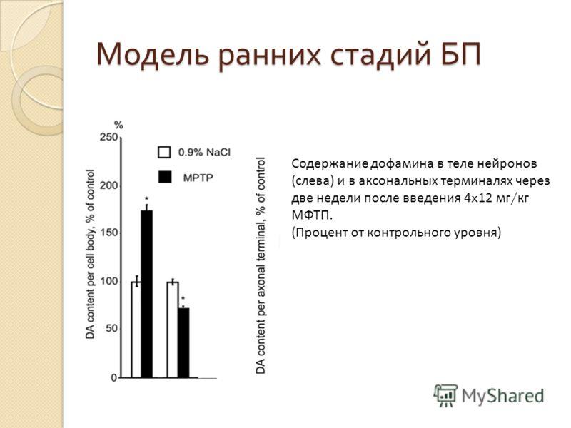 Модель ранних стадий БП Содержание дофамина в теле нейронов (слева) и в аксональных терминалях через две недели после введения 4 x 12 мг / кг МФТП. (Процент от контрольного уровня)