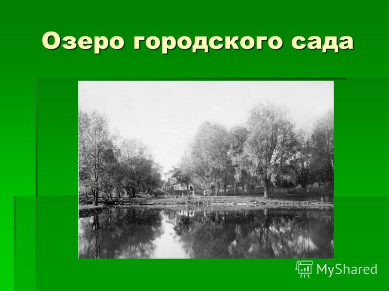 Озеро городского сада