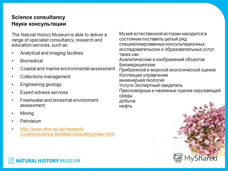 Science consultancy Наука консультации The Natural History Museum is able to deliver a range of specialist consultancy, research and education services, such as: Analytical and imaging facilities Biomedical Coastal and marine environmental assessment