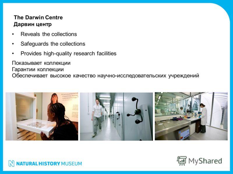 Reveals the collections Safeguards the collections Provides high-quality research facilities Показывает коллекции Гарантии коллекции Обеспечивает высокое качество научно-исследовательских учреждений