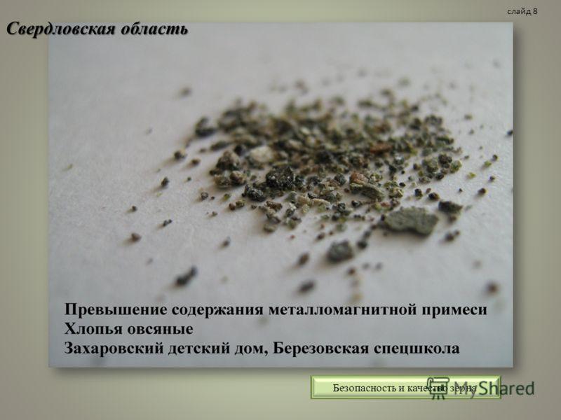 Свердловская область Безопасность и качество зерна слайд 8