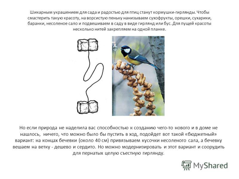 Шикарным украшением для сада и радостью для птиц станут кормушки-гирлянды. Чтобы смастерить такую красоту, на ворсистую пеньку нанизываем сухофрукты, орешки, сухарики, баранки, несоленое сало и подвешиваем в саду в виде гирлянд или бус. Для пущей кра