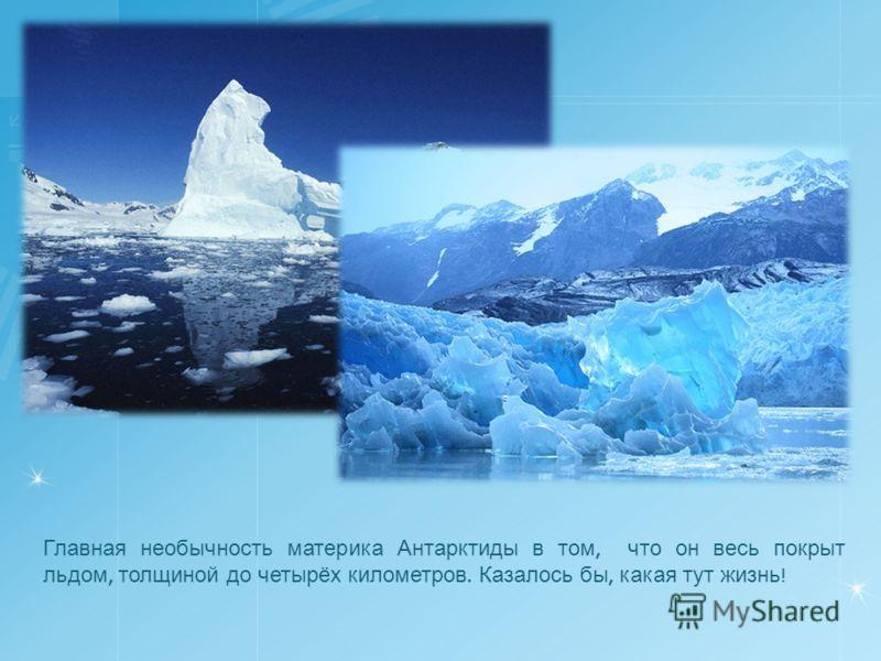 Главная необычность материка Антарктиды в том, что он весь покрыт льдом, толщиной до четырёх километров. Казалось бы, какая тут жизнь !
