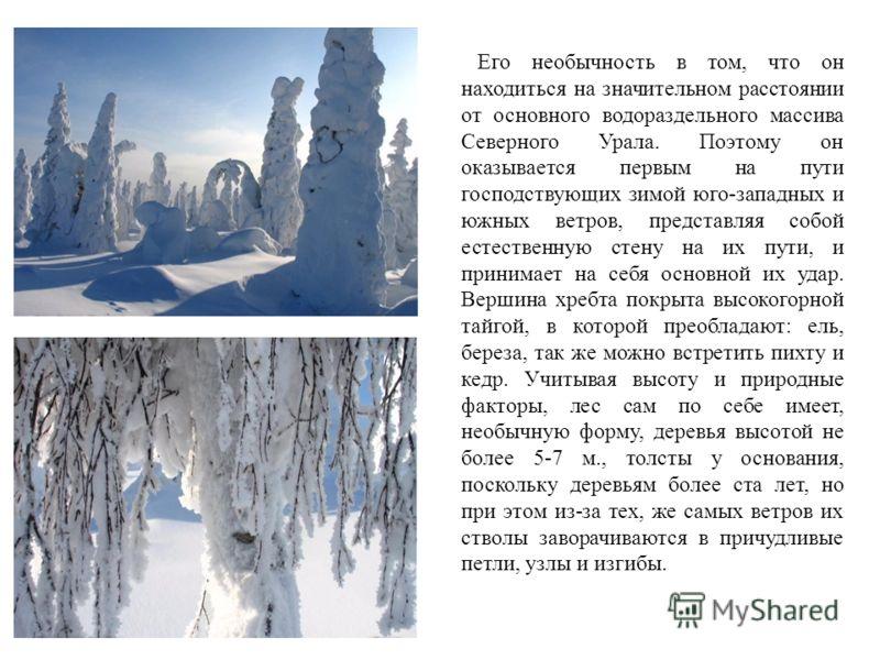 Его необычность в том, что он находиться на значительном расстоянии от основного водораздельного массива Северного Урала. Поэтому он оказывается первым на пути господствующих зимой юго-западных и южных ветров, представляя собой естественную стену на