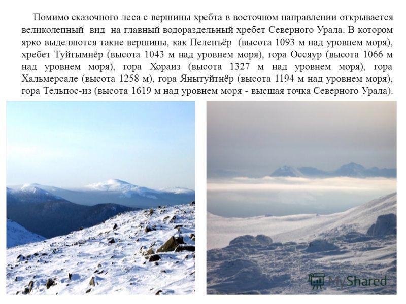 Помимо сказочного леса с вершины хребта в восточном направлении открывается великолепный вид на главный водораздельный хребет Северного Урала. В котором ярко выделяются такие вершины, как Пеленъёр (высота 1093 м над уровнем моря), хребет Туйтымнёр (в