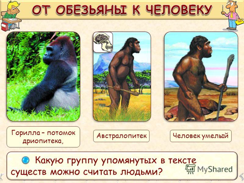 Какую группу упомянутых в тексте существ можно считать людьми? Горилла – потомок дриопитека, АвстралопитекЧеловек умелый