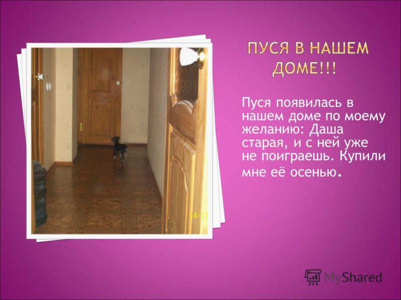 Пуся появилась в нашем доме по моему желанию: Даша старая, и с ней уже не поиграешь. Купили мне её осенью.