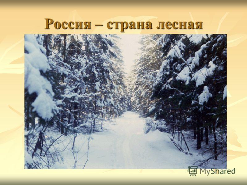 Россия – страна лесная
