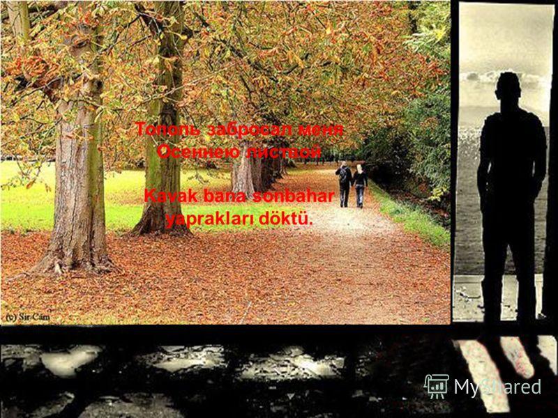 Я спросил у тополя Где моя любимая Kavak dan sordum ki Sevgilim nerde diye