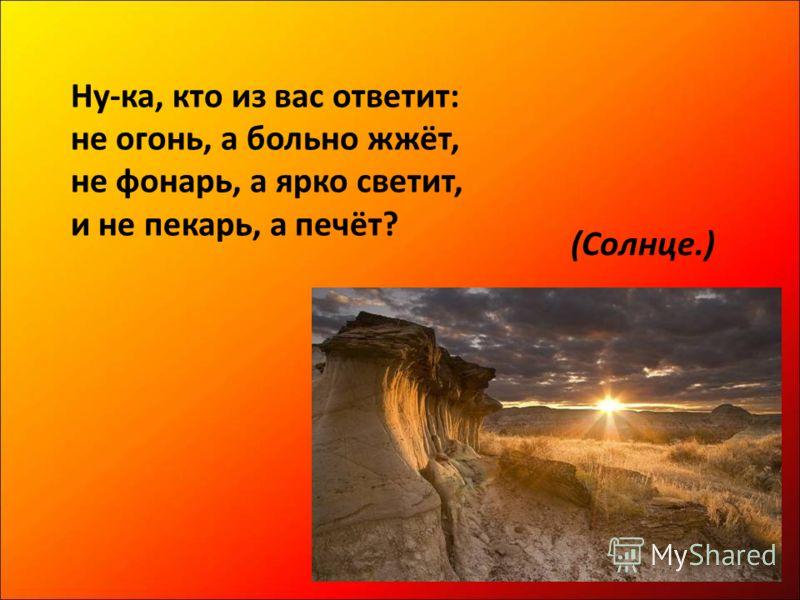 Ну-ка, кто из вас ответит: не огонь, а больно жжёт, не фонарь, а ярко светит, и не пекарь, а печёт? (Солнце.)
