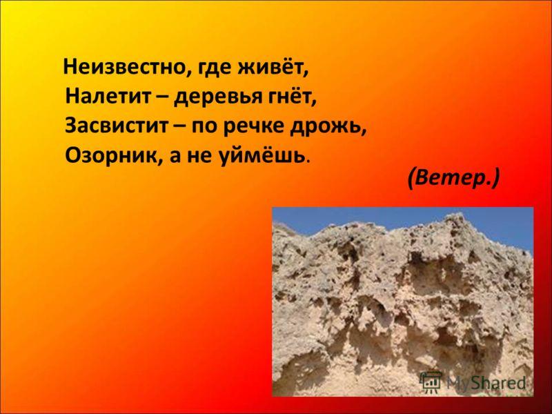 Неизвестно, где живёт, Налетит – деревья гнёт, Засвистит – по речке дрожь, Озорник, а не уймёшь. ( Ветер.)