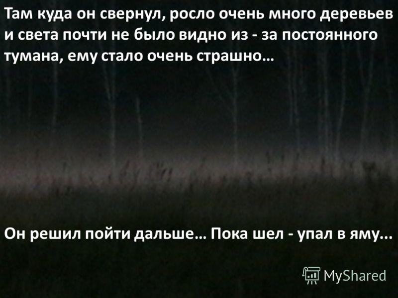 Там куда он свернул, росло очень много деревьев и света почти не было видно из - за постоянного тумана, ему стало очень страшно… Он решил пойти дальше… Пока шел - упал в яму...
