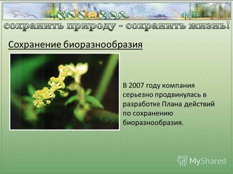 Сохранение биоразнообразия В 2007 году компания серьезно продвинулась в разработке Плана действий по сохранению биоразнообразия.