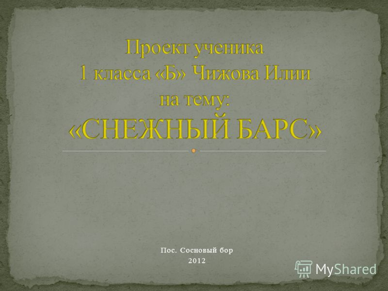 Пос. Сосновый бор 2012