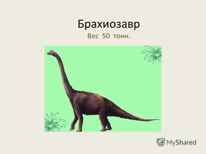 Брахиозавр Вес 50 тонн.