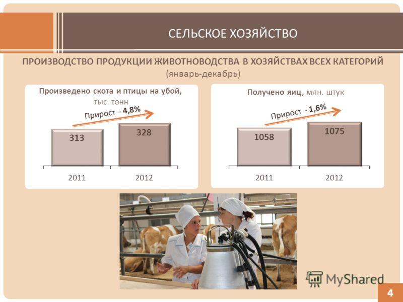 СЕЛЬСКОЕ ХОЗЯЙСТВО ПРОИЗВОДСТВО ПРОДУКЦИИ ЖИВОТНОВОДСТВА В ХОЗЯЙСТВАХ ВСЕХ КАТЕГОРИЙ (январь-декабрь) Произведено скота и птицы на убой, тыс. тонн Получено яиц, млн. штук 4
