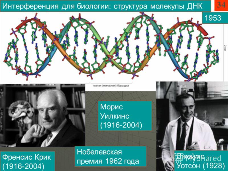 Френсис Крик (1916-2004) Джеймс Уотсон (1928) Интерференция для биологии: структура молекулы ДНК Морис Уилкинс (1916-2004) Нобелевская премия 1962 года 34 1953