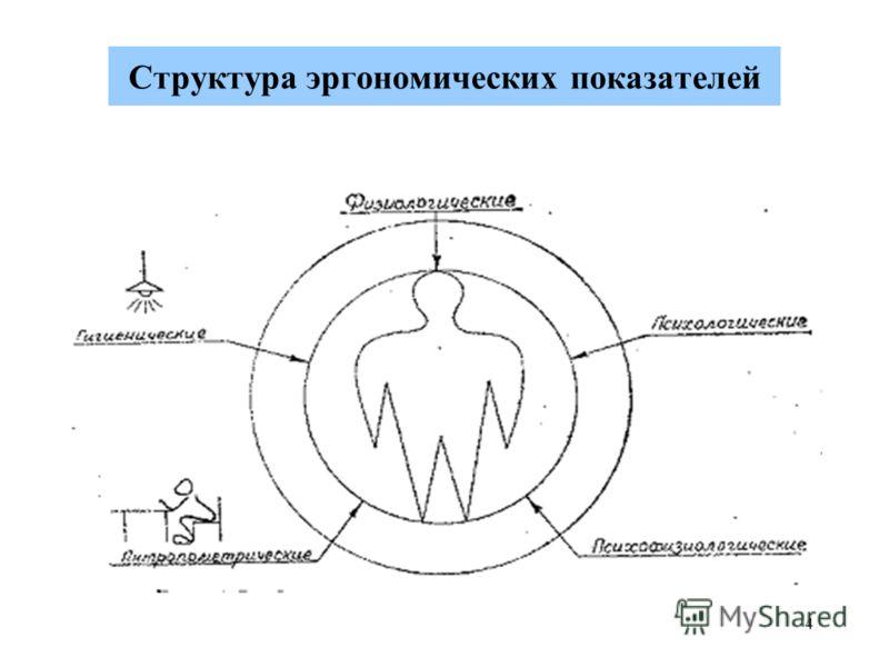 4 Структура эргономических показателей