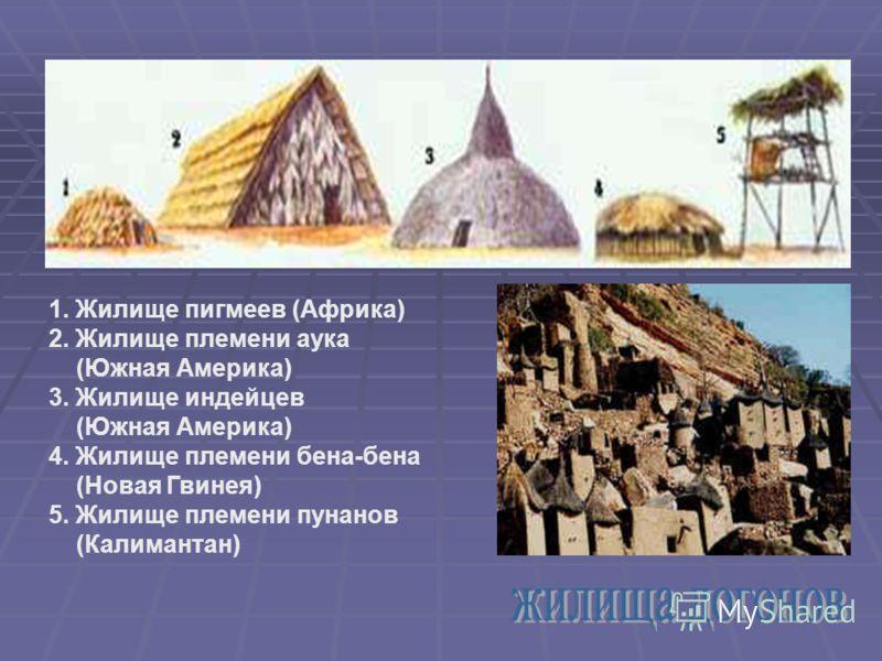 1. Жилище пигмеев (Африка) 2. Жилище племени аука (Южная Америка) 3. Жилище индейцев (Южная Америка) 4. Жилище племени бена-бена (Новая Гвинея) 5. Жилище племени пунанов (Калимантан)