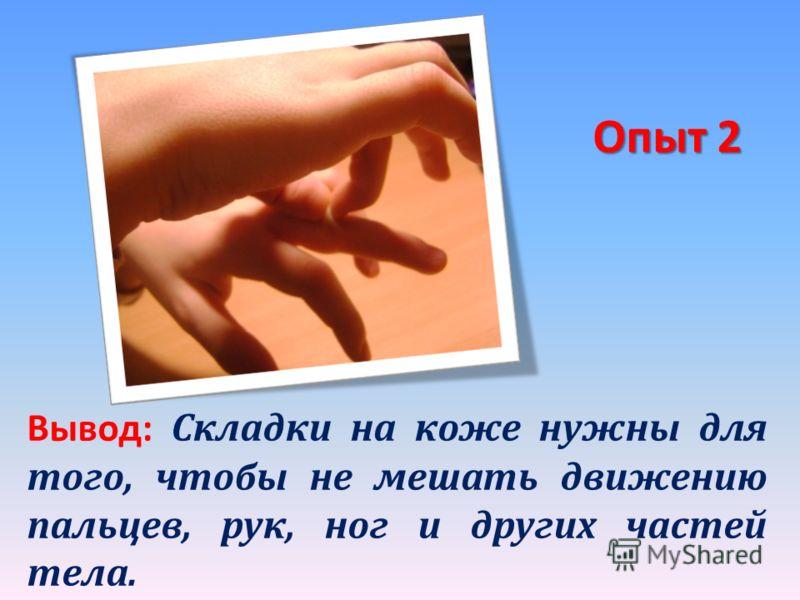 Опыт 2 Вывод: Складки на коже нужны для того, чтобы не мешать движению пальцев, рук, ног и других частей тела.