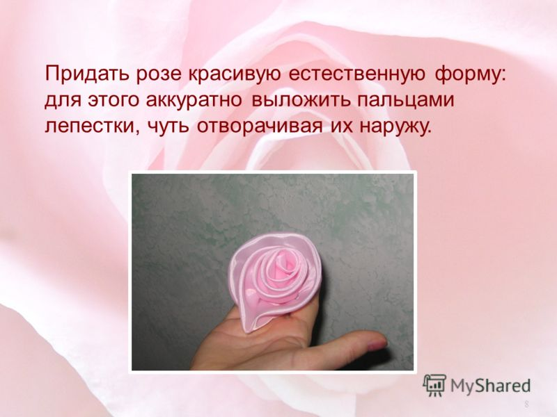 Придать розе красивую естественную форму : для этого аккуратно выложить пальцами лепестки, чуть отворачивая их наружу. 8
