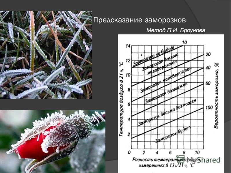 Предсказание заморозков Метод П.И. Броунова
