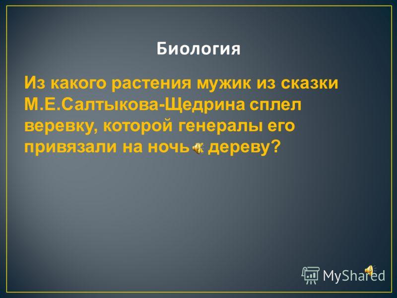 У какой реки происходит действие повести И.С.Тургенева «Ася»?