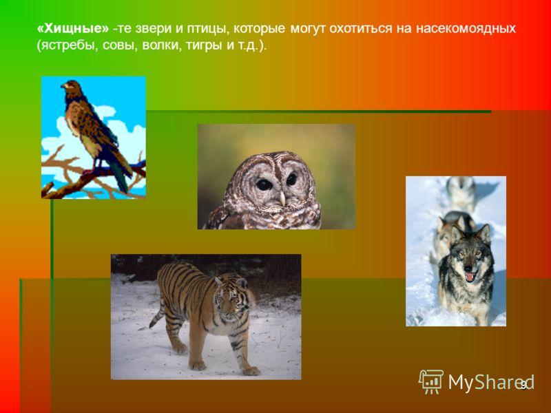 9 «Хищные» -те звери и птицы, которые могут охотиться на насекомоядных (ястребы, совы, волки, тигры и т.д.).